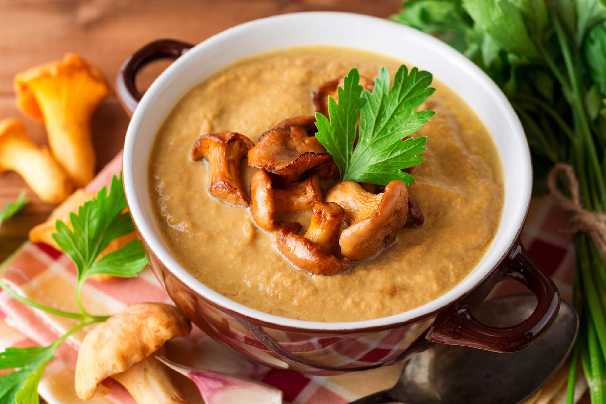 Champignon- og grøntsagssuppe